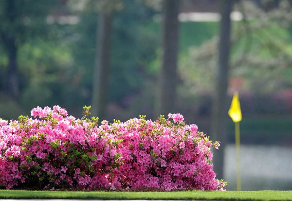 WATCH: Masters TV Ad | American Golf